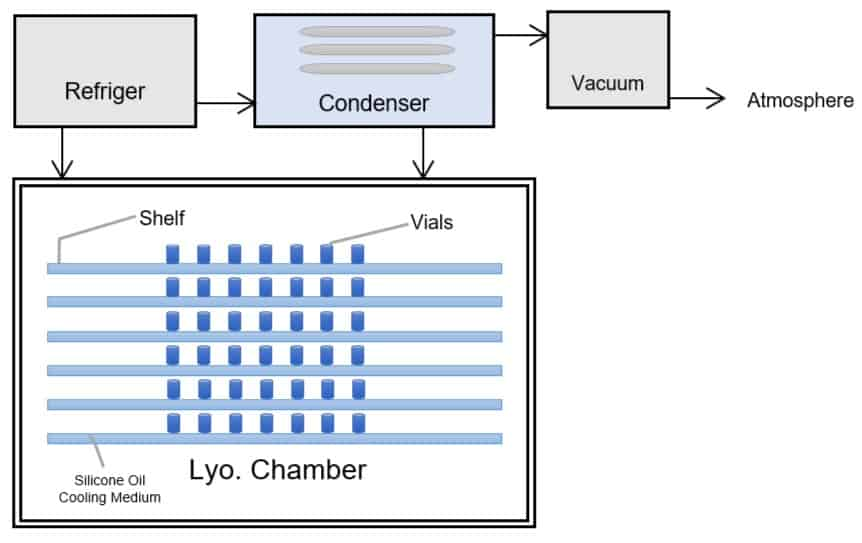 Lyophilization or Freeze-Drying: A Step-by-Step Guide » Lyo Chamber